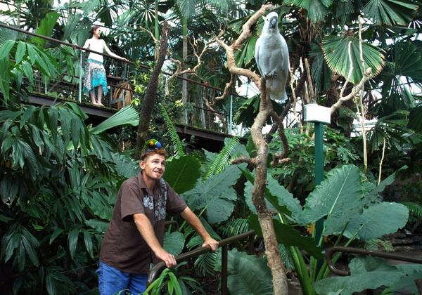 Carins Rainforest Dome