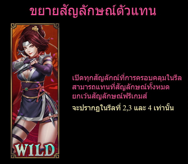 Expand Wild Symbols kunoichi Slot