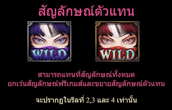 Wild Symbols kunoichi Slot